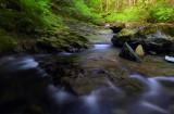 Henline Creek study #4