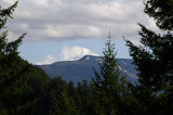Indian Mountain and Mount Hood from Ruckel Creek Trail