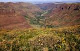 Big Indian Gorge study 2