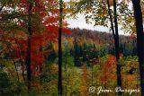 Gatineau Hills