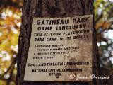 Gatineau Park - Parc de la Gatineau