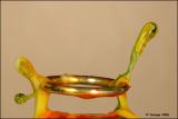 Water sculpture 10028