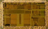 chip15_007.jpg