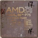 chip17_001.jpg