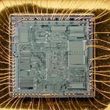 chip28_005.jpg