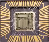 chip37_011.jpg