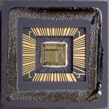 chip41_002.jpg