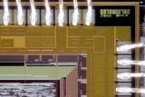 chip11_010.jpg macro 26:1