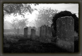 Steyning Graveyard.jpg