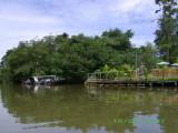 Rainforest canals