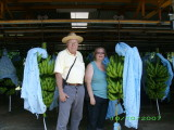 Dave and Jean with bananas