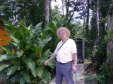 Dave of the jungle!