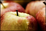 CRW_1810-apples3.jpg