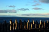 Fuerte Bulnes, Vista al Estrecho de Magallanes