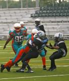 Ny Sharks Football ( Womans Tackle Football)