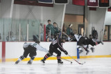 stg07hockey_brooks_042.jpg