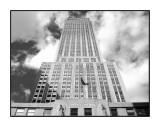 NY 2006 - 0236nb.jpg