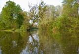 Wilanow Park