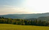 Afternoon Landscape