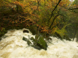 Stock Ghyll Force - Ambleside