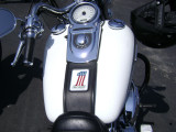 35th Anniversary Harley Davidson #1