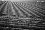 Parallel Ploughing