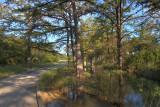 Verde Creek