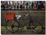bicycle & tram stop 2.jpg