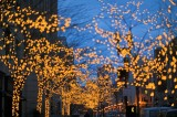 Boston Christmas Lights