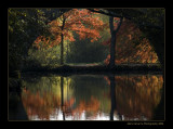 Parc de Majolan Blanquefort  France