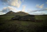 Fallen moai, Ahu Tongariki.