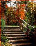 Stairway for a color show !