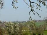 Limburg2.jpg