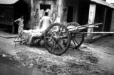 Bangladesh (14).TIF