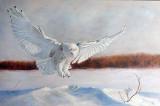 La reine des neiges - Huile 24 X 36 - Collection privée