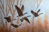 En vol au soleil - Huile 24 x 36 - Collection privée