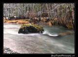 creek05_6717.jpg