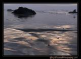 beach11_6955.jpg