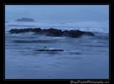 beach13_6971.jpg