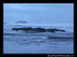 beach14_6972.jpg