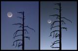Crescent moon show repeats: 2004 and 2007