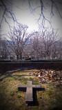 trinity_church_cemetery