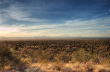 Sonoran desert, sunset, with distant haze _DSC5823