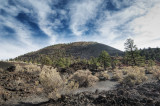 Sunset Crater Volcano, Arizona _DSC6326