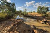 Bullock Creek waterhole, Moorinya National Park DSC_8956
