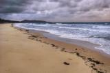 Ramsay bay, beach and storm, Hinchinbrook Island IMGP4642