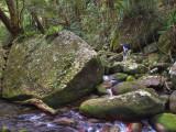 Really big rock, Frenchman Creek, near Babinda (DSCN0823)