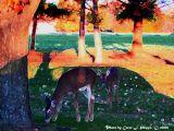 Deer at Dusk.