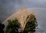 Rainbow covering Madison.