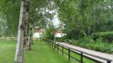 A Fence and a Hedge